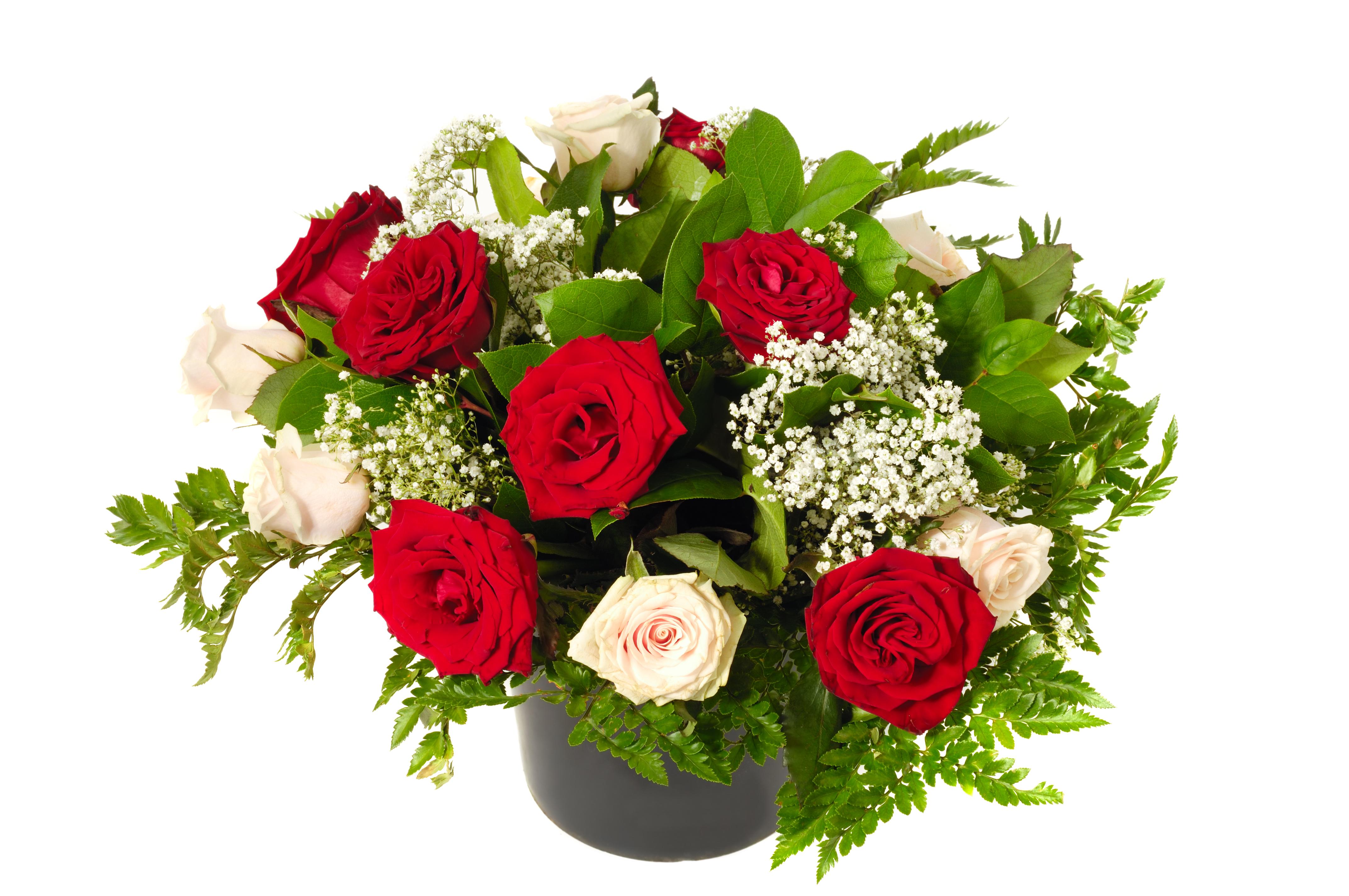 цветы букеты картинки на белом фоне