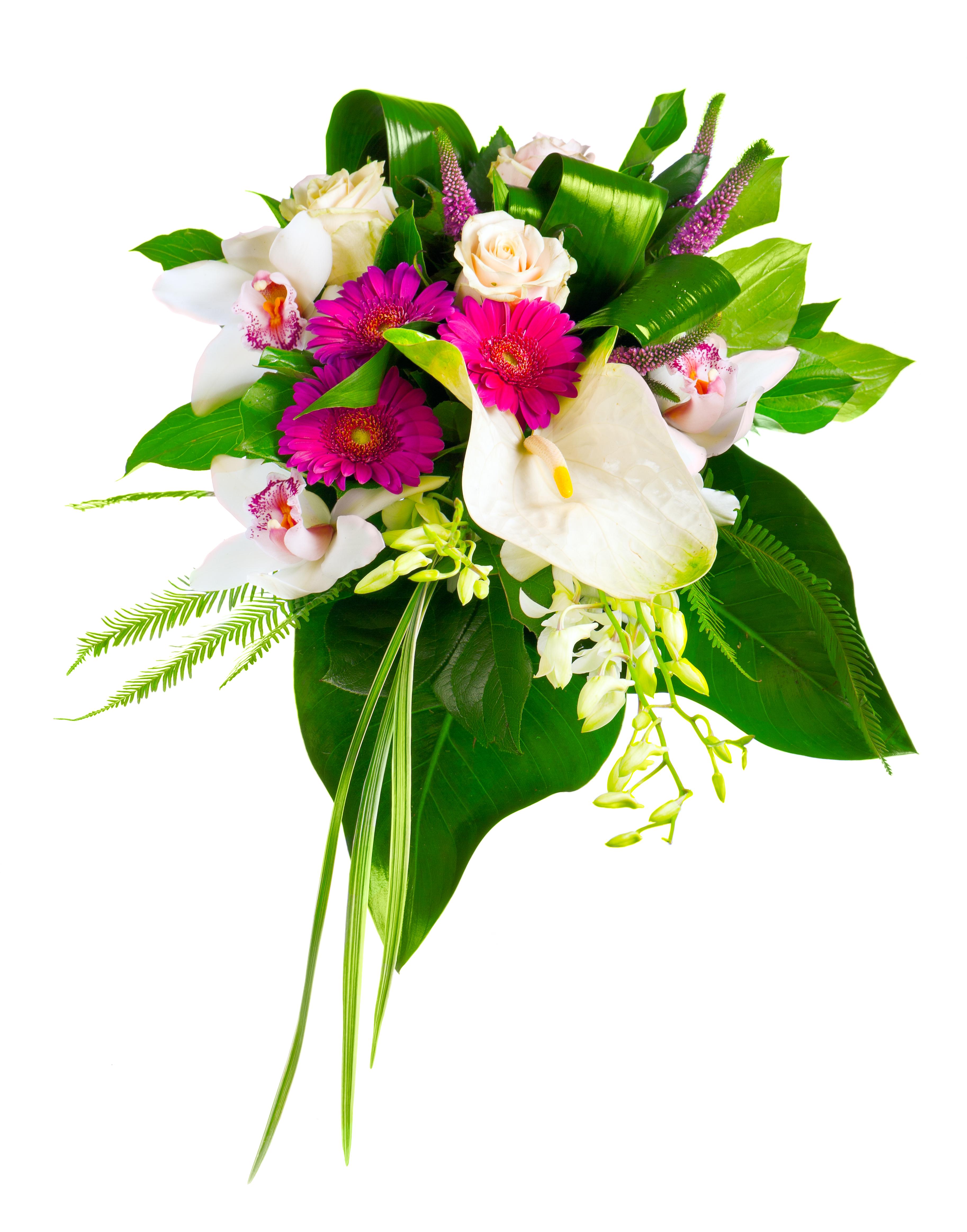 Букеты с орхидеями и антуриумом, магазин