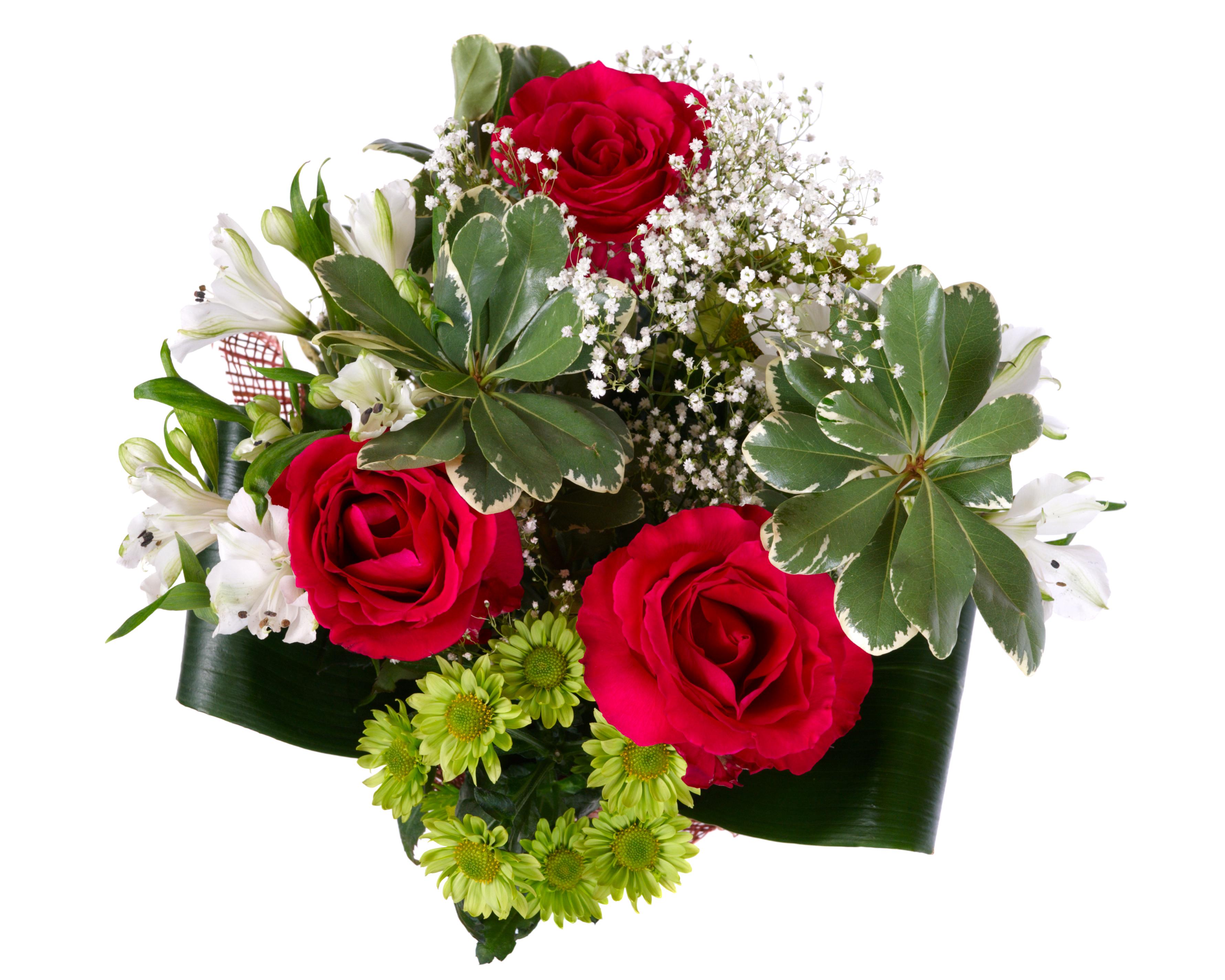 Roses Dhalia Fleuriste