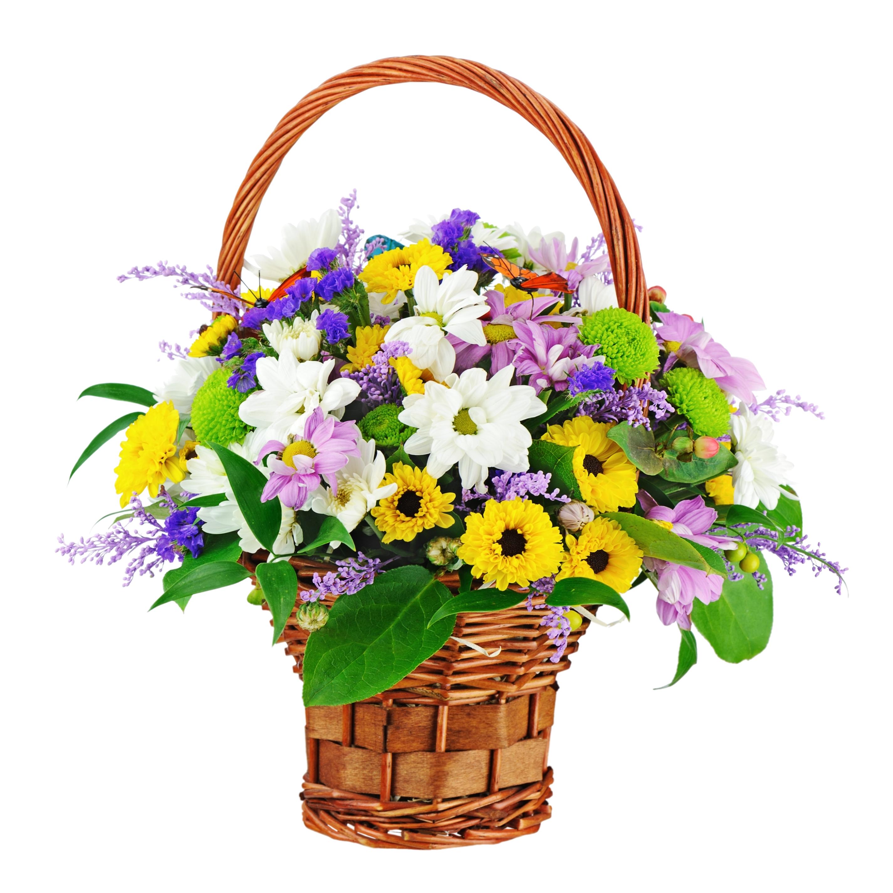 Chrysanthemums dhalia fleuriste flower bouquet in wicker basket isolated on white background closeup izmirmasajfo