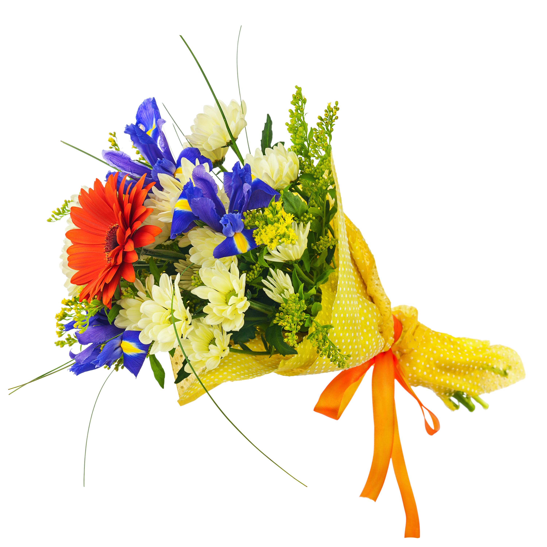 Irises Dhalia Fleuriste